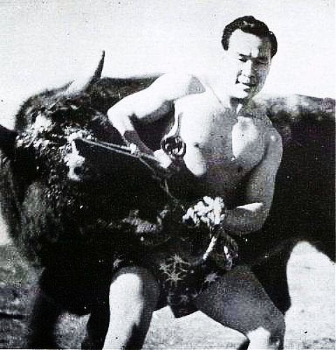 Mas Oyama Bull Fight